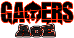 Gamers Ace